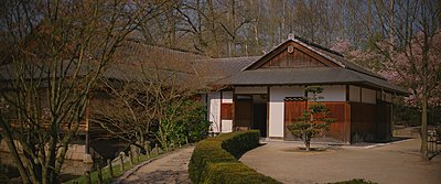 Japanese garden on the jvc gy ls300 part II-after01.jpg