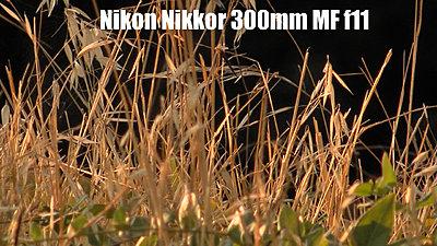 MTF adatper and Nikon lenses, Good?  Depends upon lens.-nikkor300mmf11redone.jpg