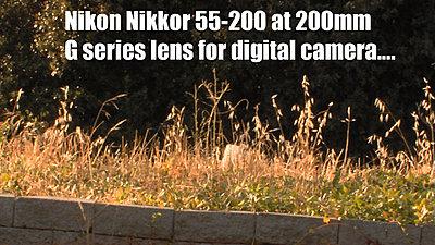 MTF adatper and Nikon lenses, Good?  Depends upon lens.-nikkor55-200gdigitalredone.jpg