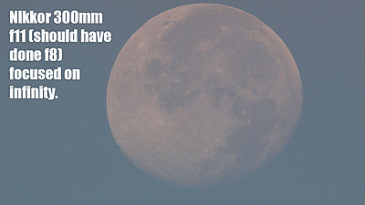 MTF adatper and Nikon lenses, Good?  Depends upon lens.-mooninthemorning2.jpg