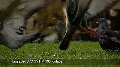 Video review of JVC GY-HM 100-still2.jpg