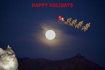 Full Moon Shoot-bella-santa.jpg