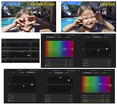 How do you go about grading GoPro's Protune w/Native WB?-protunegrading.jpg