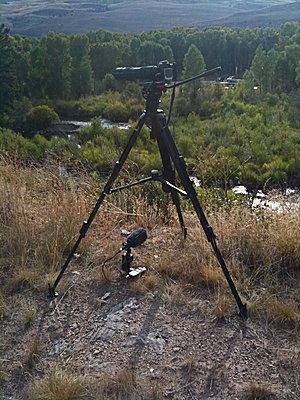 Nikon D300s announced... still MJPEG-img_0166.jpg