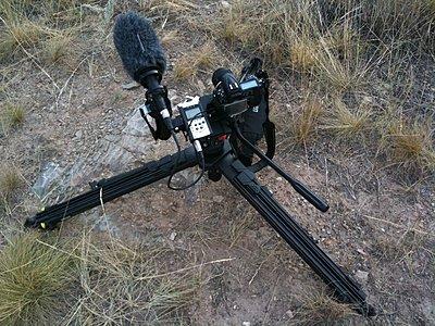 Nikon D300s announced... still MJPEG-img_0170.jpg