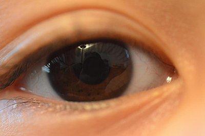 Reccomend Nikon Macro for D80 DSLR?-eye.jpg