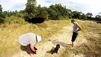 How to keep flying insects from front of lens while filming?-onthe-beach.jpg