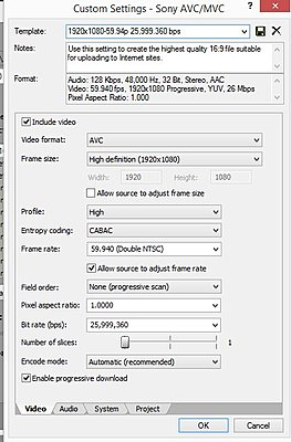 Sony DSC-RX10 AVCHD problems-sony-max-bitrate.jpg