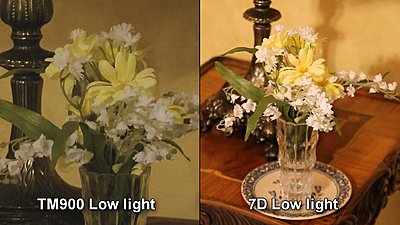 TM900 - Pretty impressed!-tm900-vs-7d-low-light.jpg