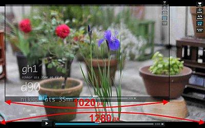 GH1 Sensor Size - larger than specs-gh-1-sensor-size.jpg