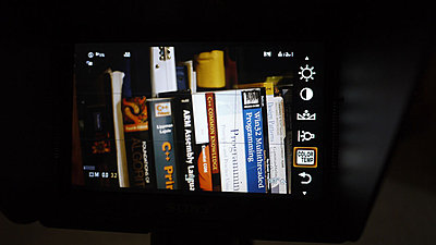 Sony monitor looks great-4.jpg