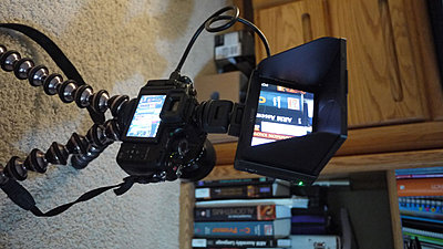 Sony monitor looks great-7.jpg