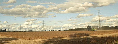 GH1 Feature film grabs (Anamorphic, 40Mbps hack)-harvesting.jpg