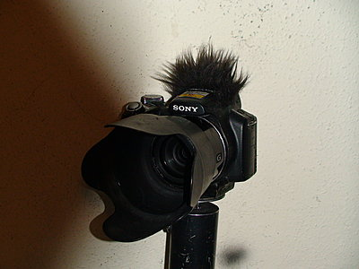 The Einstein Microphone Windscreen for a Photo Camera-dsc03455.jpg