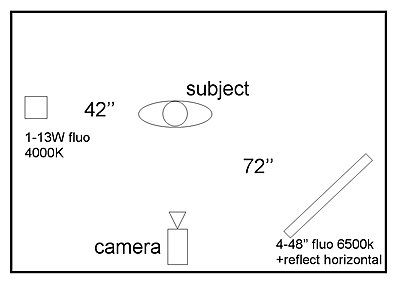 Fluorescent vs skin tone-image10-plan.jpg