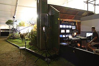 Lighting Award at Ellerslie Flower Show-img_1830.jpg