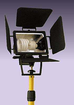 Shooting with Compact Fluorescent Lights (CFLs).-halogenconversionlavenderbkgd.jpg