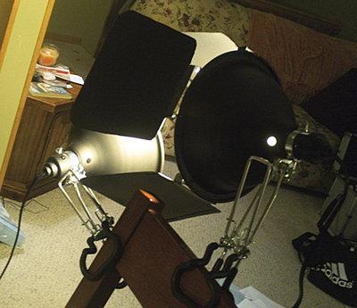 Shooting with Compact Fluorescent Lights (CFLs).-barndoors-7.jpg