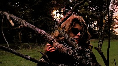 Daylight shooting in the woods-voir1.jpeg