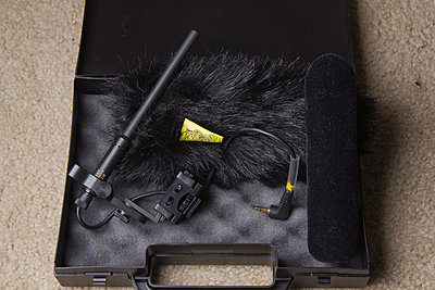 Private Classifieds listings from 2011-tinymic4sale.jpg