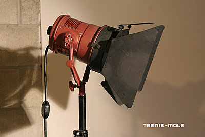 Private Classifieds listings from 2013-teenie-mole-01.jpg