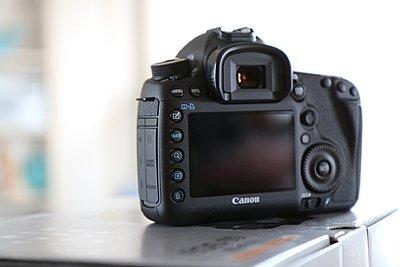 Canon 5D Mark III-img_0173.jpg