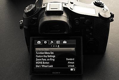 Sony DCS RX-10 Camera For Sale 5.00 US-_dsc0013.jpg