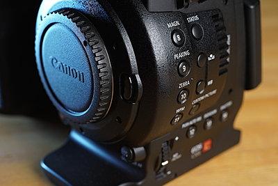 Canon C100-dsc02520.jpg