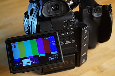 Canon C100-dsc02526.jpg