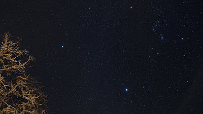 Astral Time Lapse - Mt Fuji-stars.jpg