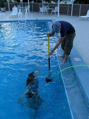 Underwater with SI2K or Mini?-img_0665.jpg