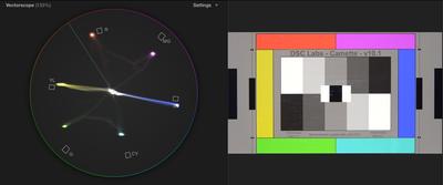 PXW-X70 + DSC Chart + Vectorscope-screen-shot-2014-10-04-5.35.51-pm.png