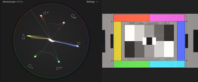 PXW-X70 + DSC Chart + Vectorscope-screen-shot-2014-10-04-5.36.04-pm.png