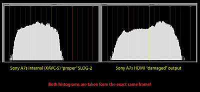 New Sony A7s to shoot 4K video-histogram.jpg