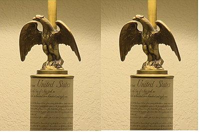 PMW-350 Developing Scene Files (Picture Profiles)-eagles.jpg