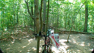Teaser Mountain Biking footage-bike.jpg