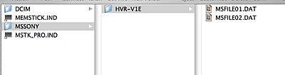 V1U Picture Profiles / Presets-folder2.jpg