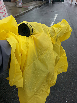 Any one used the EA50 in the rain?-makeshiftraincovercamera.jpg