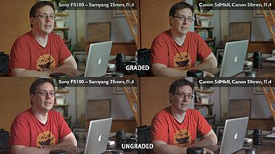 60D vs FS100?-fs100-vs-5dii-skin-tones.jpg