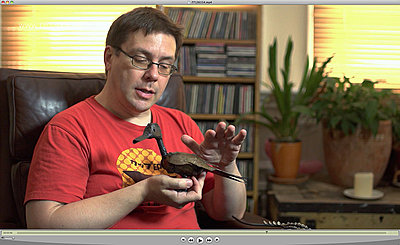 NEX-FS100U compared to Canon 5Diii-highlights-fs100.jpg