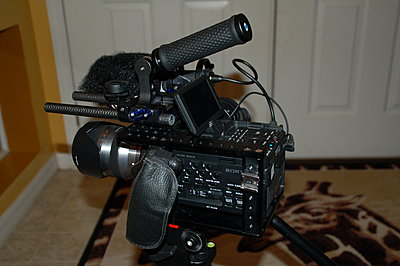 What would make your FS100 better?-dsc_3119.jpg