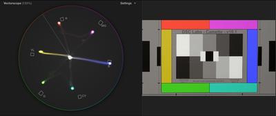 CX900/AX100 + DSC chart + Vectorscope-idlight-indoor-preset-a4-.png