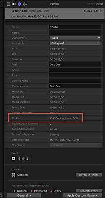 FCPX & Sony RX100V 4K?-infopane.jpg