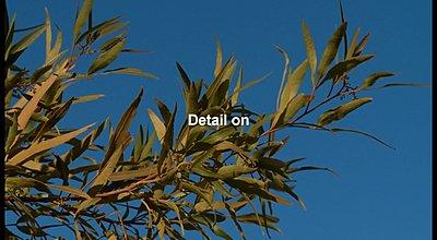 HD to SD Downconversion-dvd-test2.jpg