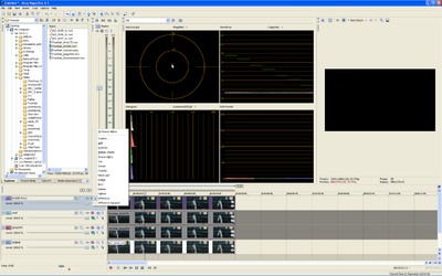 HD>SD downconversion Mac/FCP only-fountain_comparo2.png