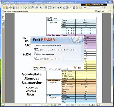 EX1/3 Picture Profile Worksheet/Form-foxit-reader-xp-sp3.jpg