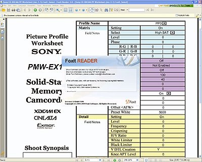 EX1/3 Picture Profile Worksheet/Form-pp-worksheet-ver.1.1-foxit_saved.jpg
