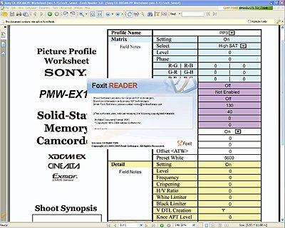 EX1/3 Picture Profile Worksheet/Form-pp-worksheet-ver.1.1-foxit_saved.jpg