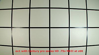 EX1 Wide Angle - Pros / Cons ?-wz00.jpg