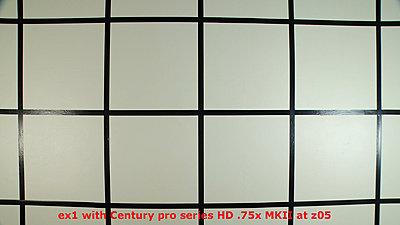 EX1 Wide Angle - Pros / Cons ?-wz05.jpg